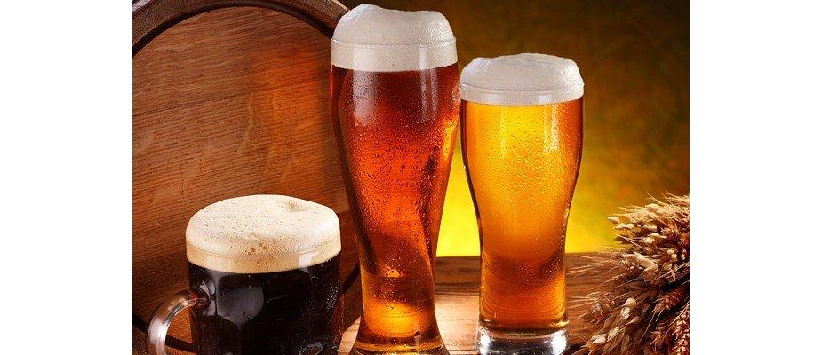 Tipos de copos de cerveja: entenda as diferenças e quando usar cada um